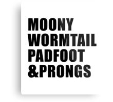 Moony, Wormtail, Padfoot & Prongs Metal Print