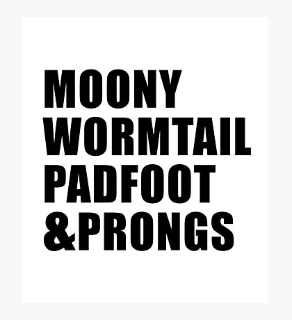 Moony, Wormtail, Padfoot & Prongs Photographic Print