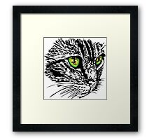 Cat looking for something Framed Print