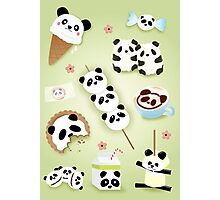 Panda Snacks Photographic Print