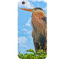 A Watchful Eye iPhone Case/Skin