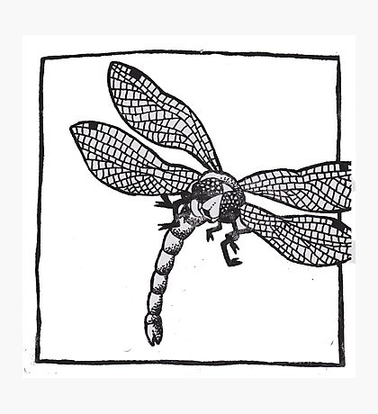 Graphic Dragonfly Photographic Print