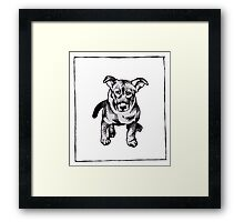 Graphic Pup Framed Print