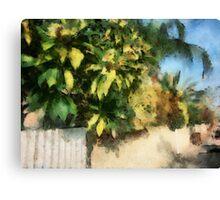 Neighborhood Canvas Print