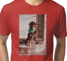 'Dexter on the steps' Tri-blend T-Shirt