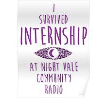 I survived Internship! Poster