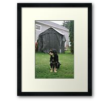 'Backyard' Framed Print