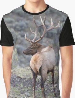 Bull Elk Graphic T-Shirt