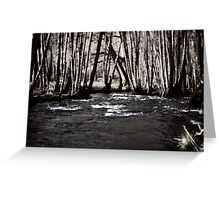 River in France Greeting Card