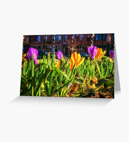 Spring Shopping Underfoot Greeting Card