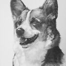 Welsh Corgi by BarbBarcikKeith