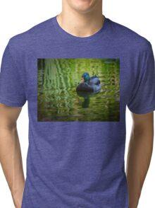 Young mallard drake Tri-blend T-Shirt
