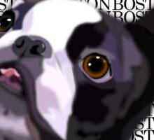 Boston Terrier - GOOOOO BOSTON Sticker