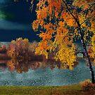 Moon Tapestry by Igor Zenin