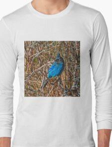 Mountain Blue Jay Long Sleeve T-Shirt