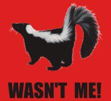 Skunk Wasn't Me Baby Tee