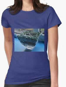 Blue Window Display Womens Fitted T-Shirt