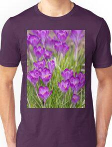Spring crocus  Unisex T-Shirt