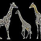 Giraffes by Betsy  Seeton