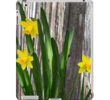Tiny Daffodils iPad Case/Skin