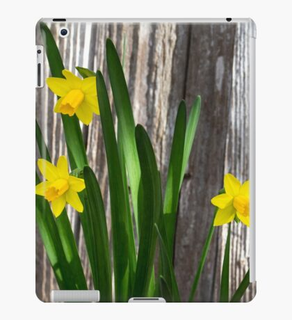 Tiny Daffodils iPad Case/Skin