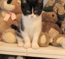 Posing With Stuffed Animals Sticker