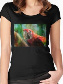 Green Winged Macaw Women's Fitted Scoop T-Shirt
