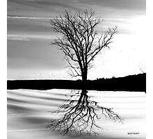 At End of Day III (Image & Poem) Photographic Print