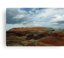 Colours Collide at the Bay of Fires Canvas Print