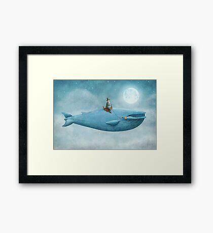 Whale Rider  Framed Print