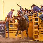 Cowboy by Natalie Ord