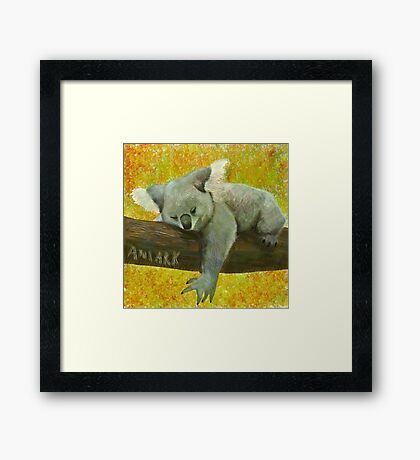 Koala's Day  Framed Print