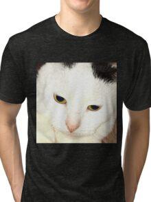 Catavasia Tri-blend T-Shirt