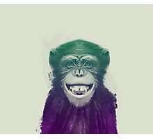 Face of Chimpanzee Photographic Print