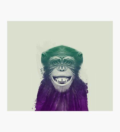Face of Chimpanzee Photographic Print