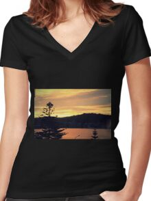 Oriental View Women's Fitted V-Neck T-Shirt