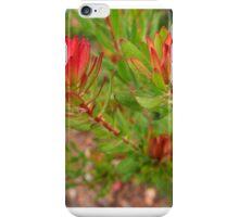 raindrops in the garden iPhone Case/Skin