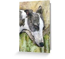 Whippet in Repose Greeting Card