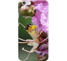 Busy little Native Bee iPhone Case/Skin