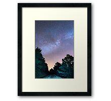 Forest Night Light Framed Print
