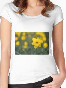 Spring Daffodil Women's Fitted Scoop T-Shirt
