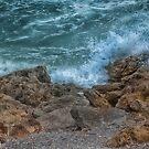 Surf and Turf  by John  Kapusta