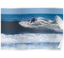 Surfing the waves Poster