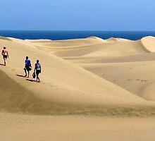 Dune Clamber by jonvin