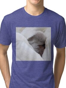 Safe in his Mothers Wings... Dorset UK Tri-blend T-Shirt