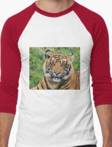 Tiger Men's Baseball ¾ T-Shirt