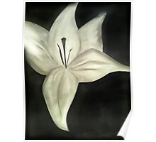Close Up Flower - Charcoal Poster