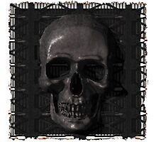 Metal Skull Photographic Print