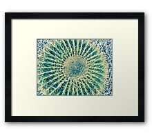 Barrel Cactus - Phoenix AZ Country Club Park Framed Print