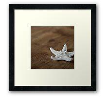 Starfish #4 Framed Print
